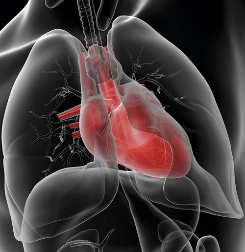 Misstänkt kardiell bröstsmärta på akuten