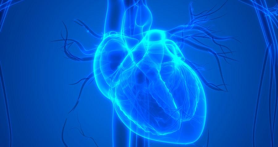 Ny riskmarkör för kammararytmi vid hypertrofisk kardiomyopati