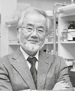Yoshinori Ohsumi, 71 år, är professor vid Tokyo Institute of Technology.
