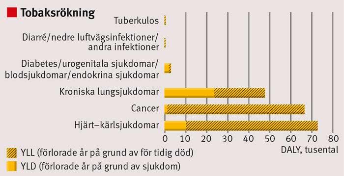 Figur 5. Sjukdomsbörda orsakad av tobaksrökning år 2010 uppdelad i olika sjukdomsgrupper.