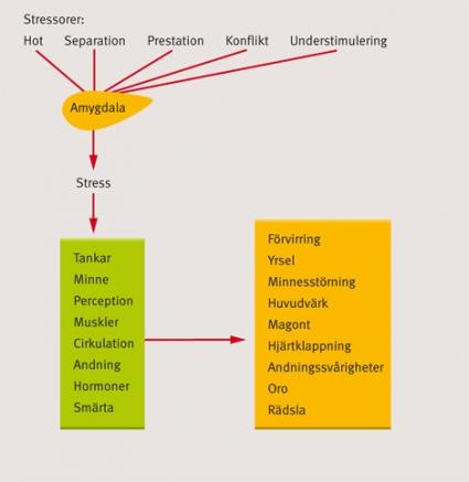 kroppsliga symtom vid stress